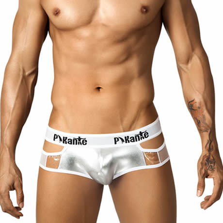 Pikante Lumiere Mesh Brief 6701